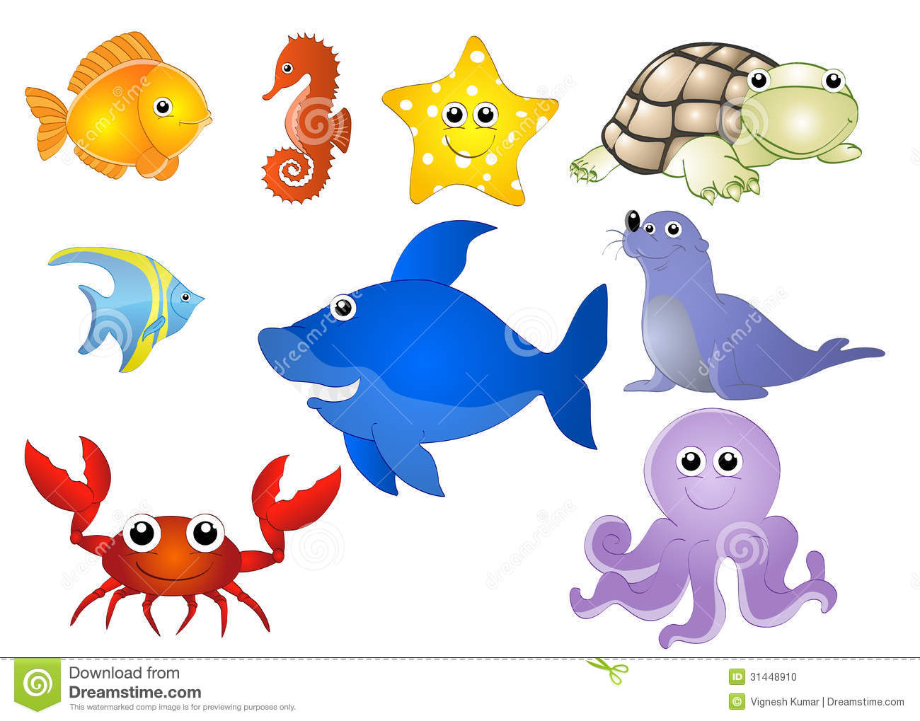 aquatic animals stock photo image 31448910