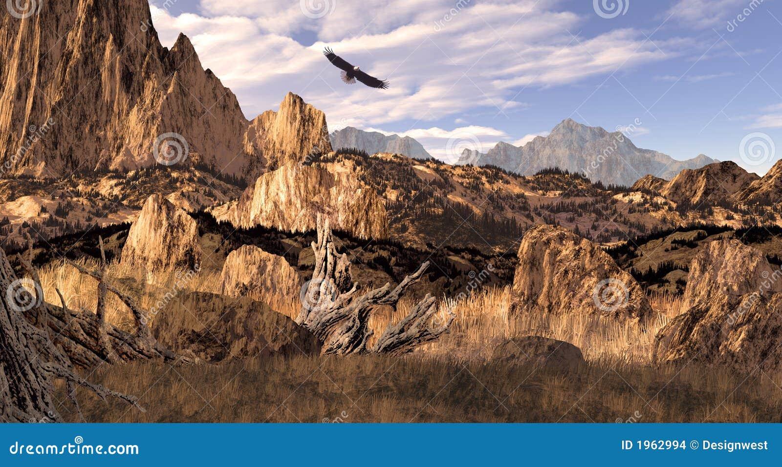Aquila calva nel Colorado Montagne Rocciose