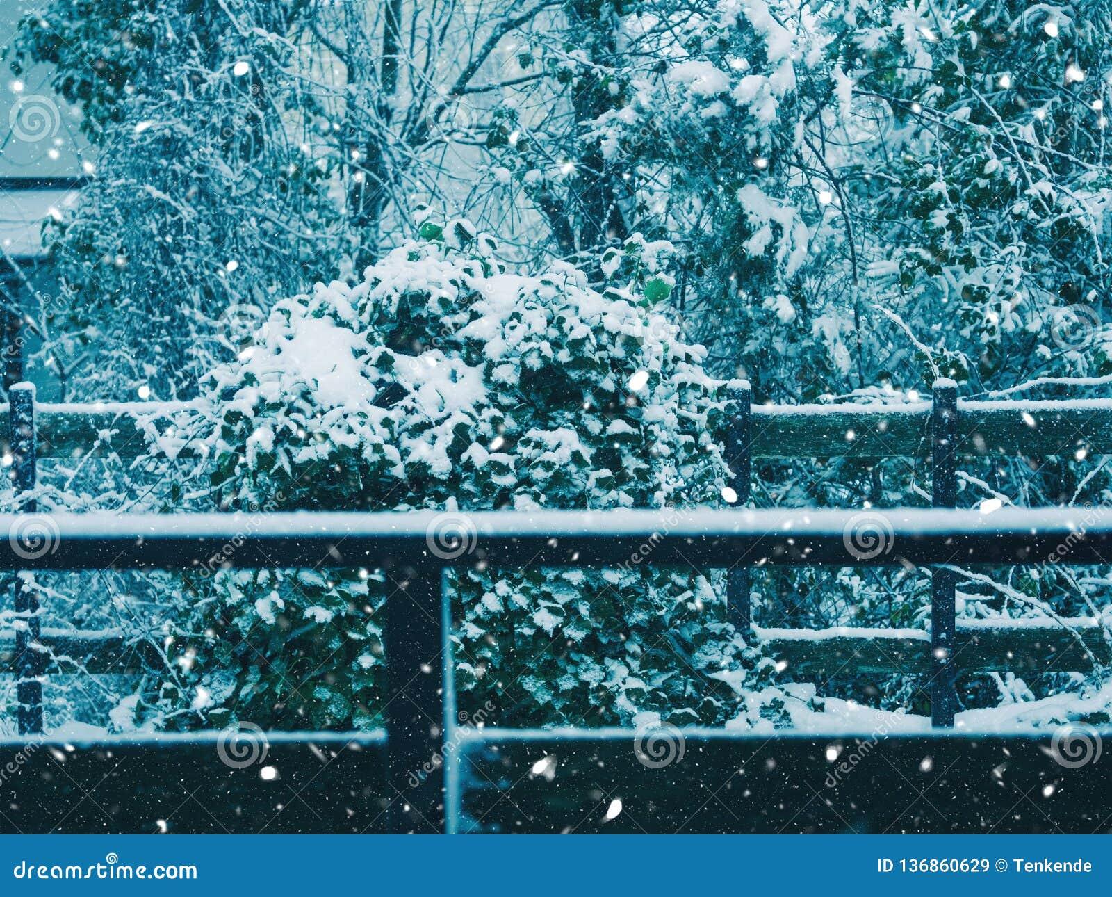 Ar livre da queda da neve no campo