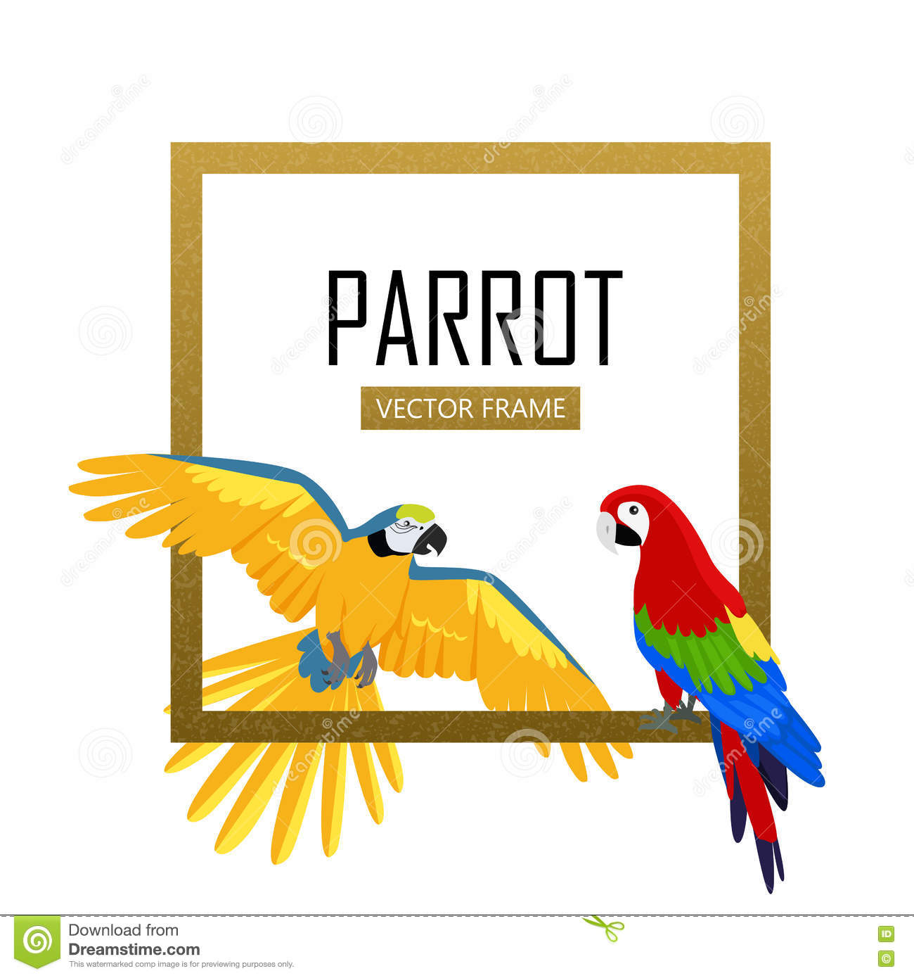 587ce6e97 Ara parrot vector frame. Birds of Amazonian forests in flat design  illustration. Fauna of South America. Beautiful Ara parrots for icons,  posters, ...