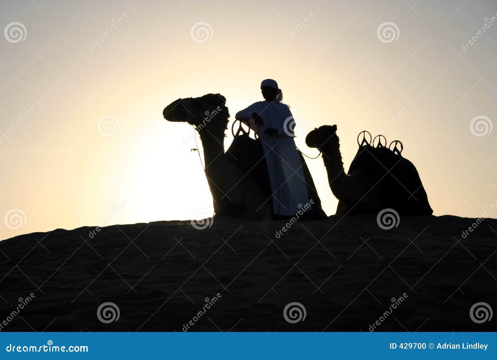 An Arab Camel Herder