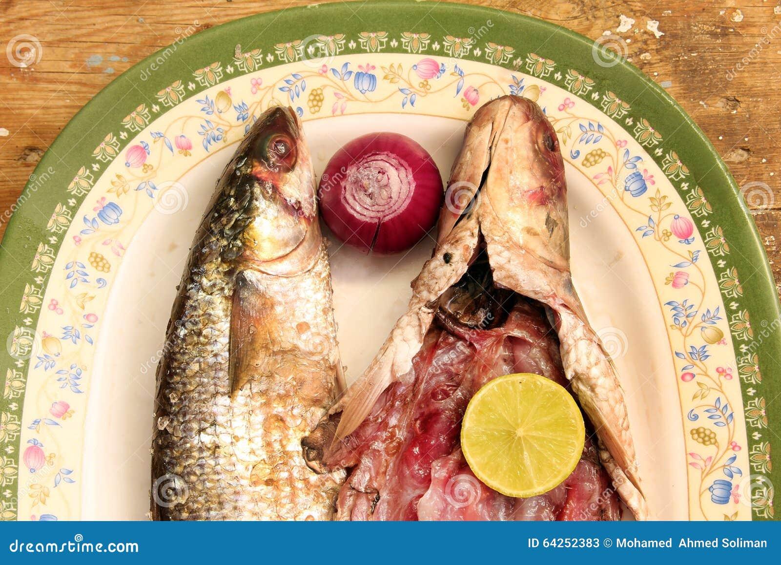 Arabian egyptian salt fish stock image image of salt for Eating mullet fish