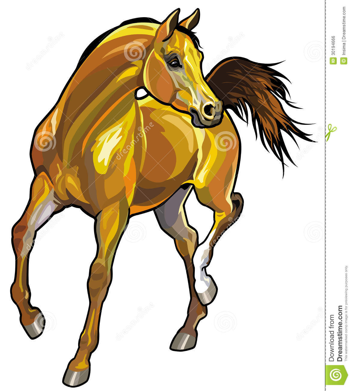 Arabian horse stock vector. Illustration of picture, pure ...