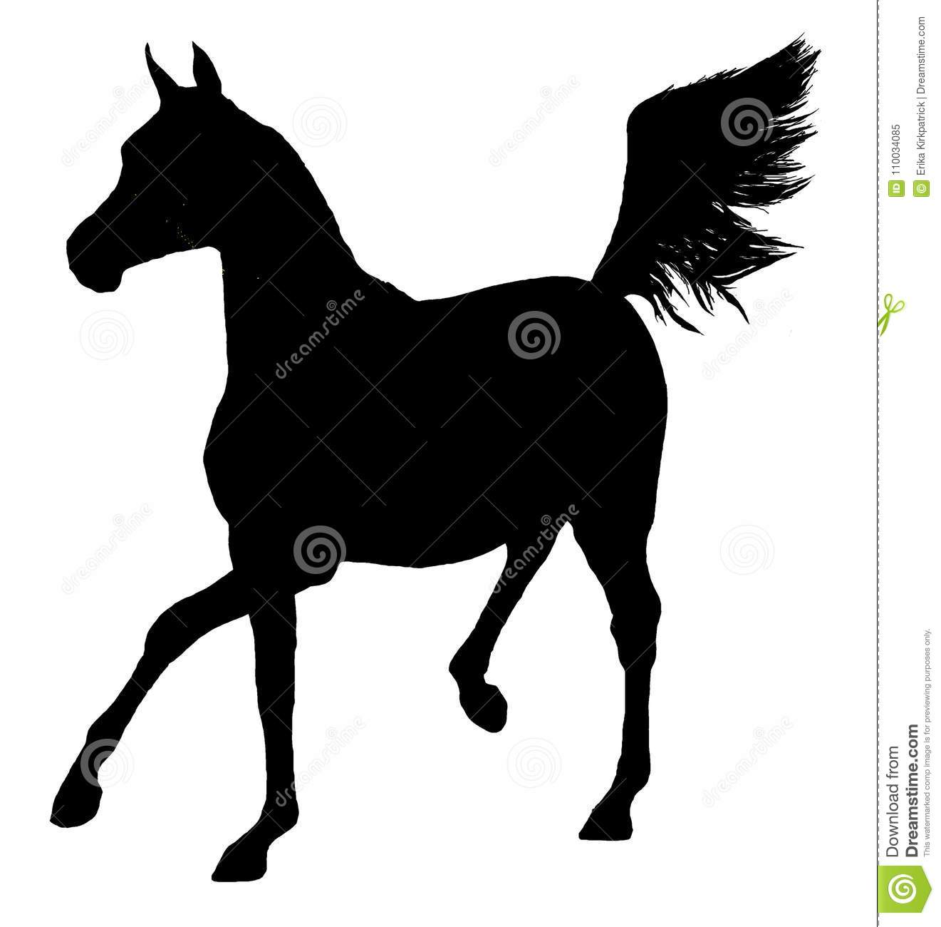 Arabian Horse Silhouette Stock Illustrations 1 495 Arabian Horse Silhouette Stock Illustrations Vectors Clipart Dreamstime