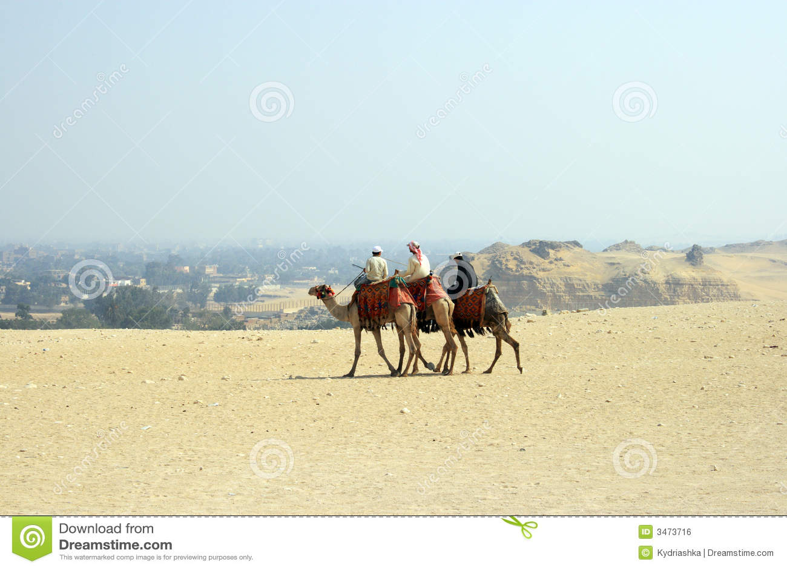 arabian men in desert royalty free stock image image
