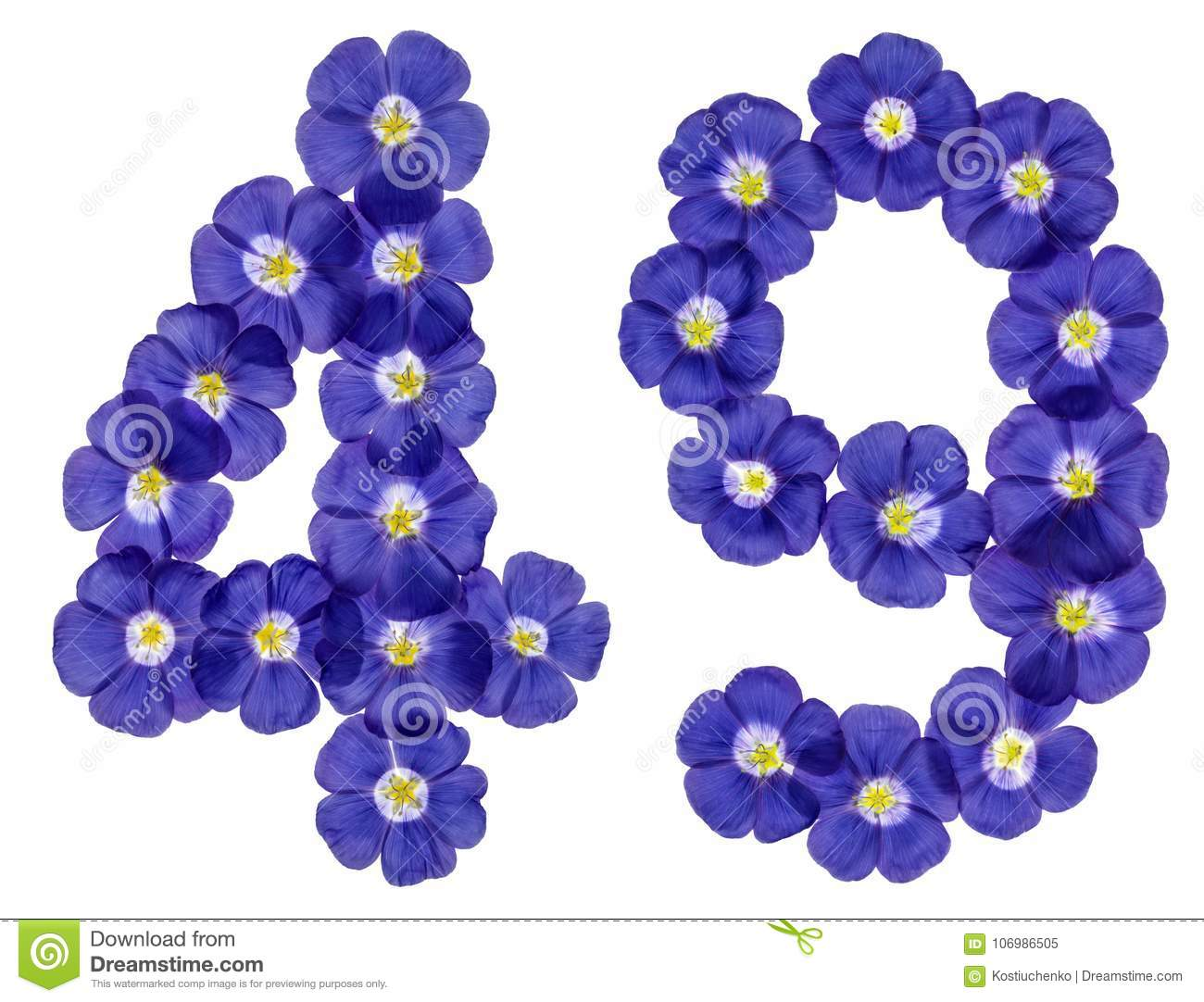 Arabic numeral 49, forty nine, from blue flowers of flax, isolated on white background