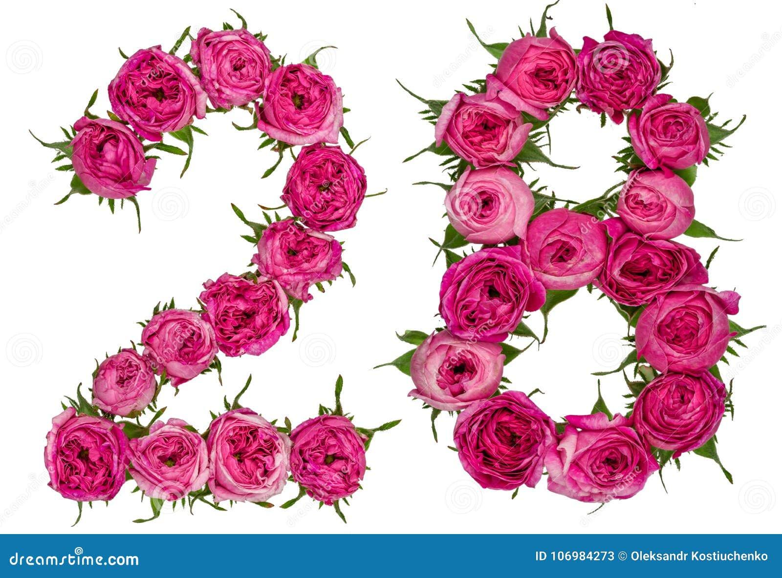 arabic-numeral-twenty-eight-red-flowers-