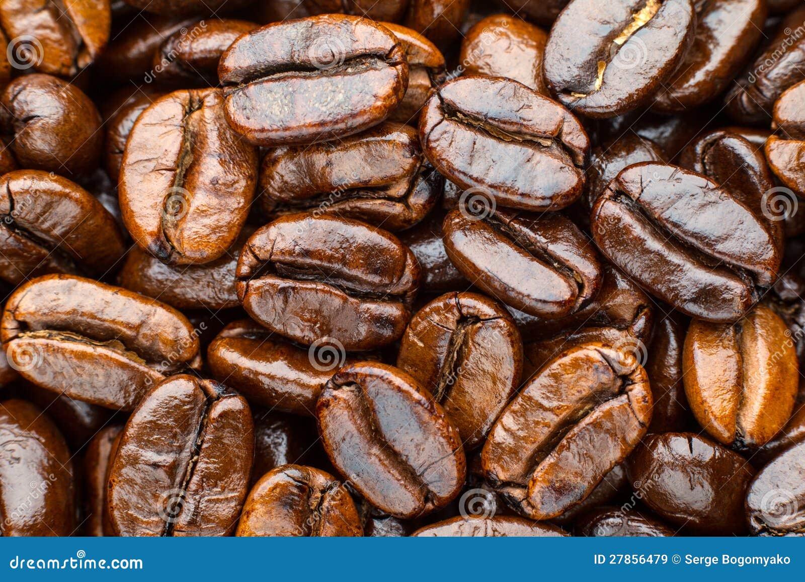 Arabica arrostita del caffè