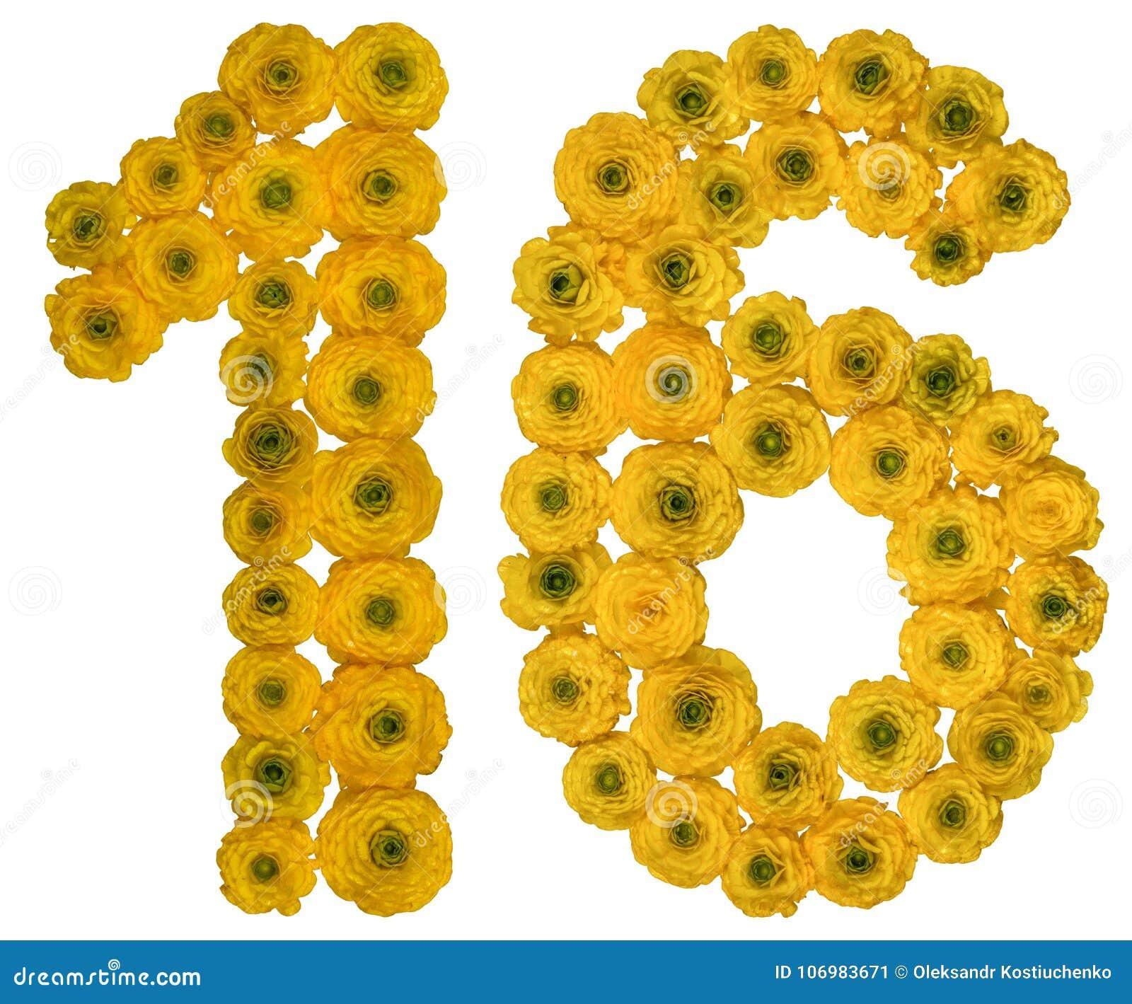 Arabiskt tal 16, sexton, från gula blommor av smörblomman, I