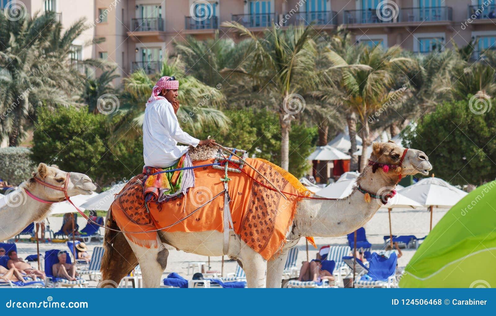 Arabski mężczyzna obsiadanie na wielbłądzie na plaży w Dubaj