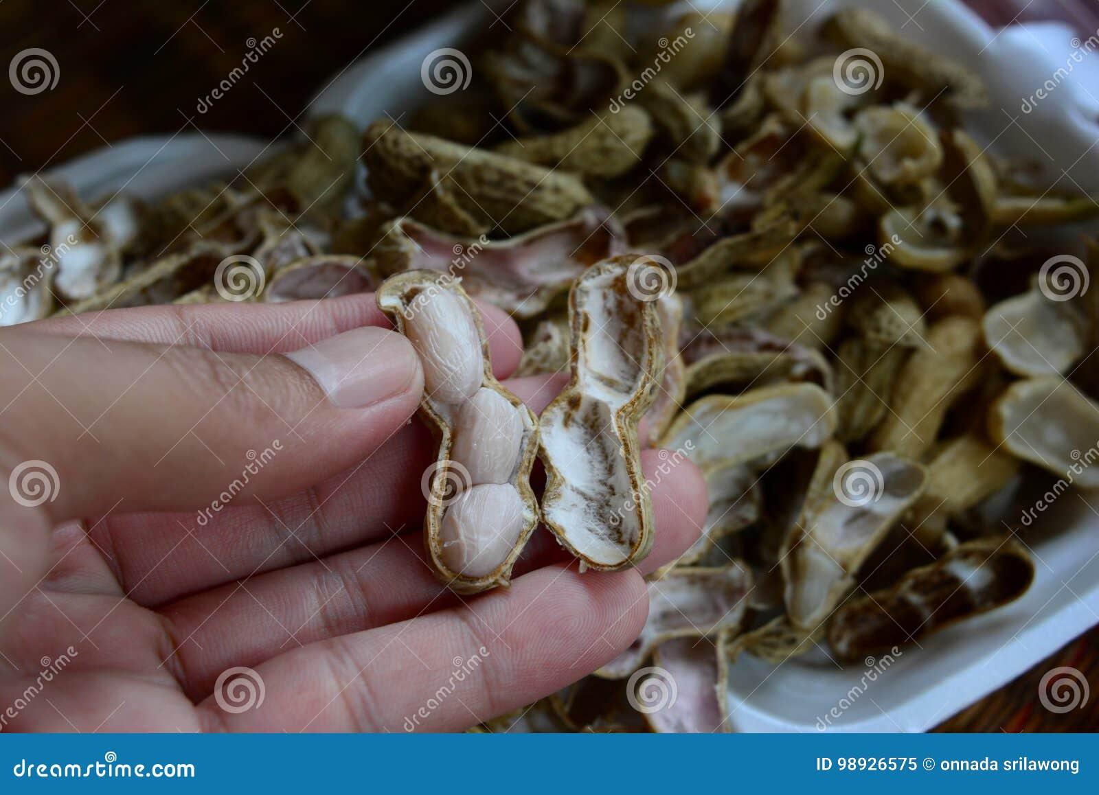Arachide sbucciata, arachidi bollite