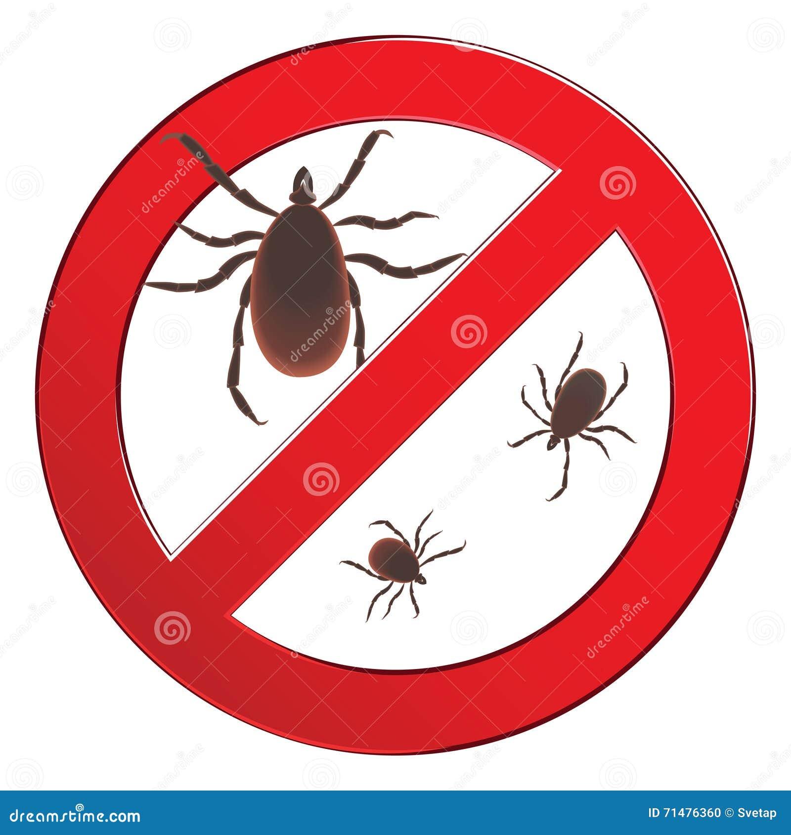 Araign e d 39 acarides rouge d 39 acarides allergie d 39 acarides pid mie parasites d 39 acarides panneau d - Araignee rouge savon noir ...