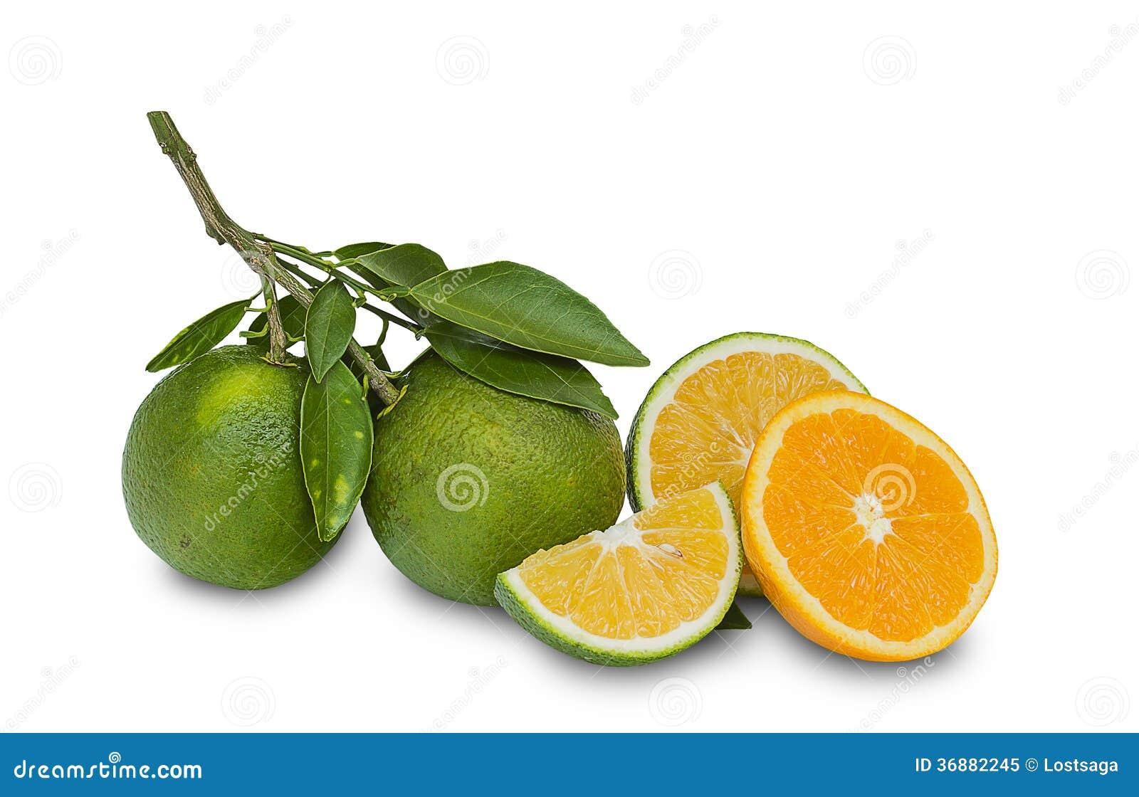 Download Arancia dolce immagine stock. Immagine di organico, verde - 36882245