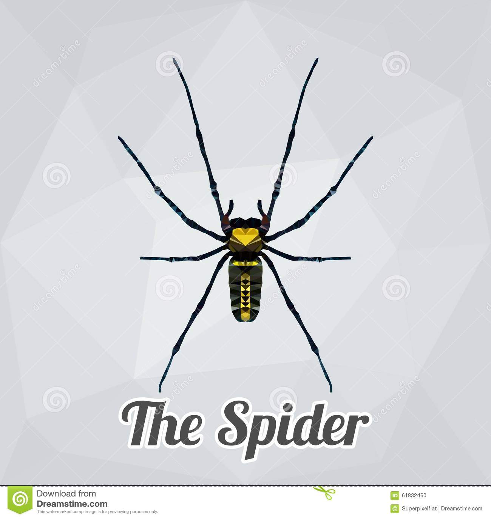 Aranha completa do corpo do vetor do polígono