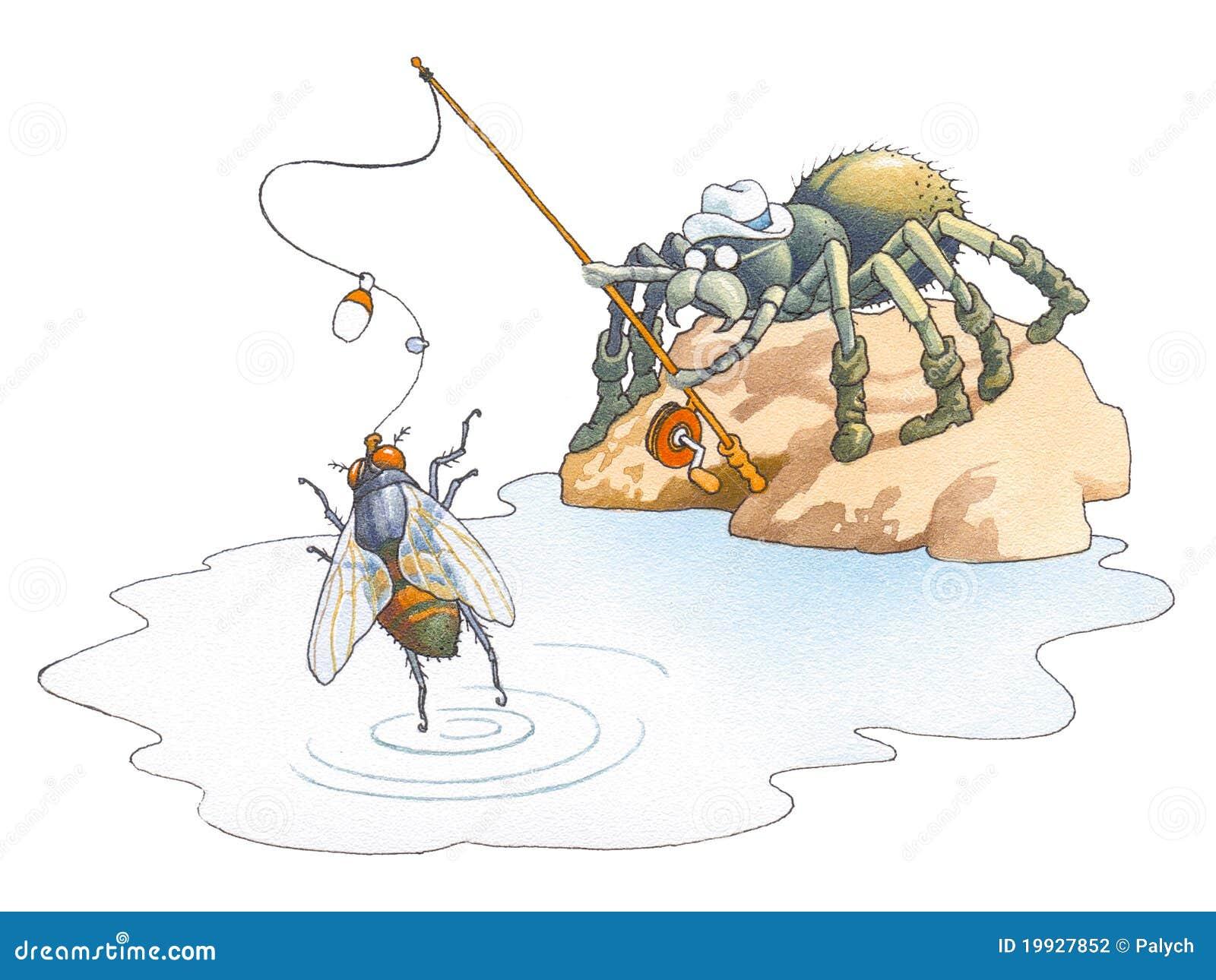 Aranha o fisher