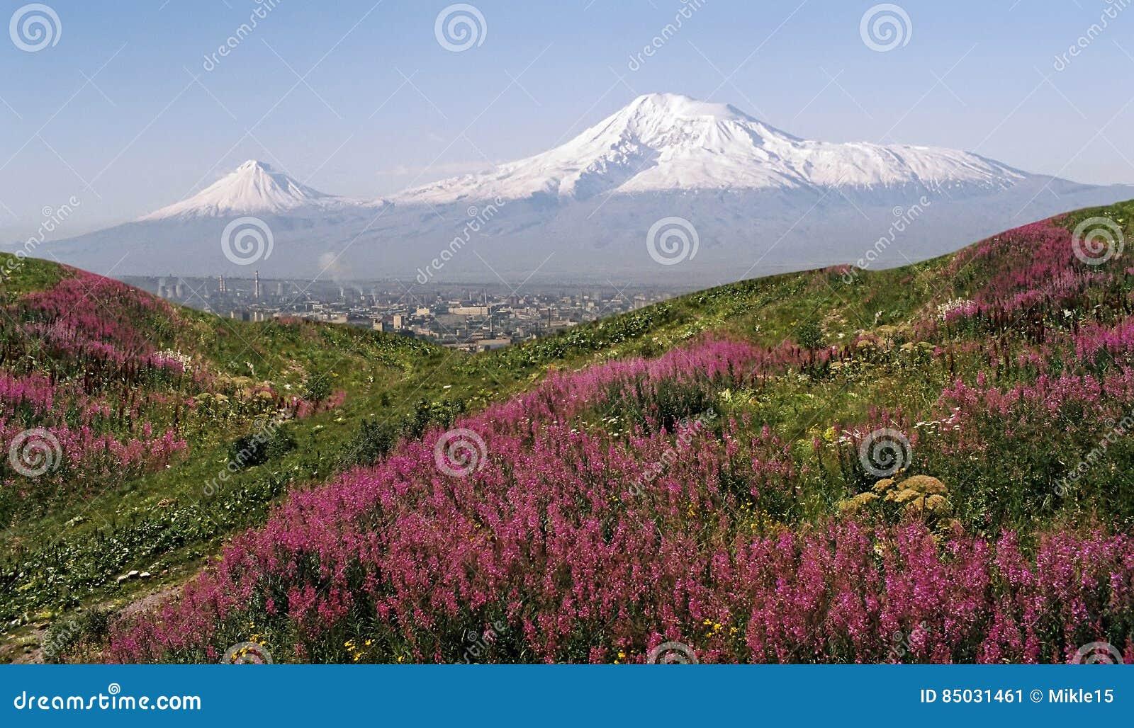 Ararat θερινή όψη βουνών ημέρας της Αρμενίας