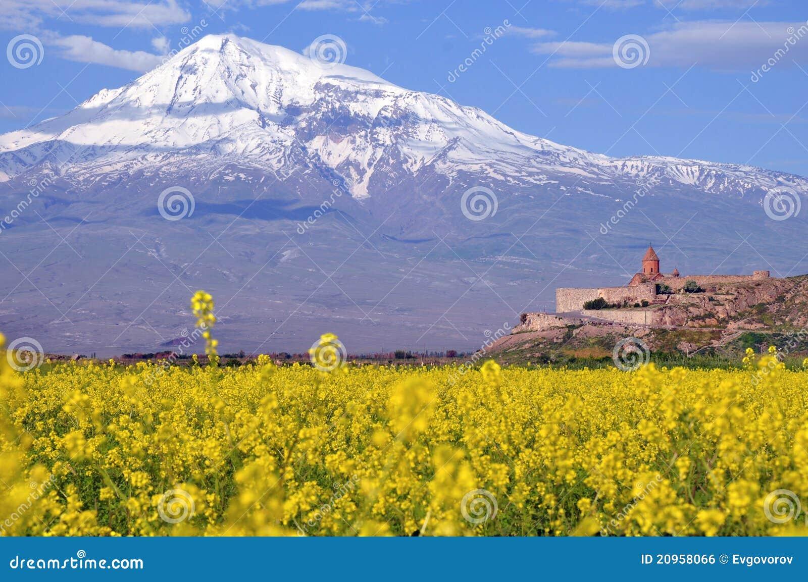 Ararat in armenia royalty free stock image image 20958066 for Ararat armenian cuisine