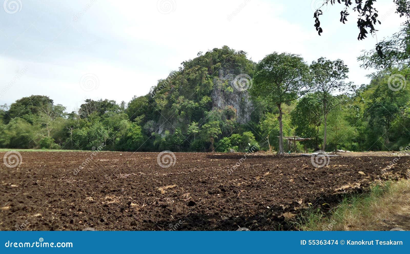 Aratura del suolo fertile nella valle