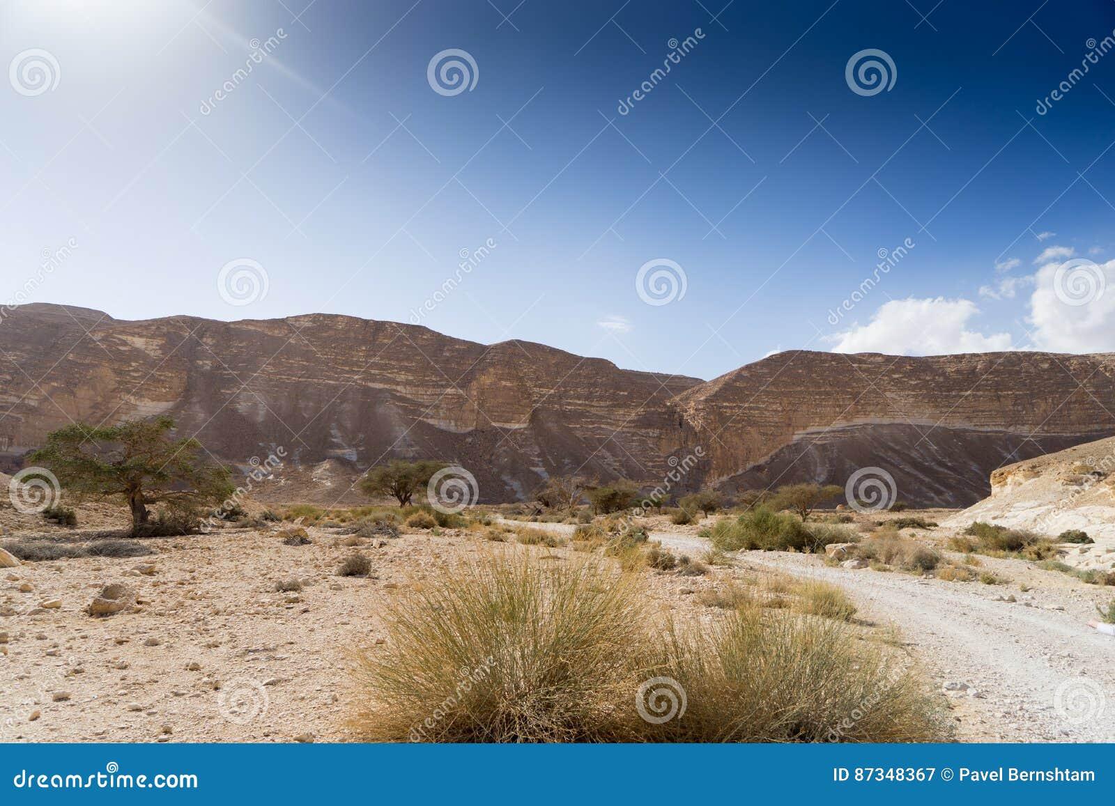 Arava ökenlopp i Israel