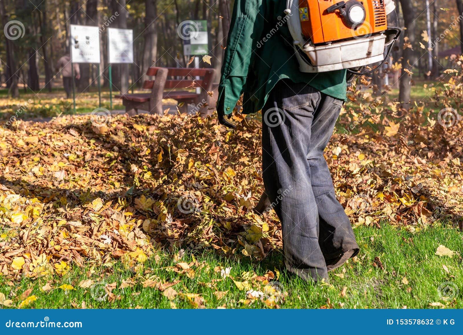 Arbeitskraft, die Hochleistungslaubsauger im Stadtpark betreibt Entfernen von gefallenen Bl?ttern im Herbst Bl?tter, die oben wir