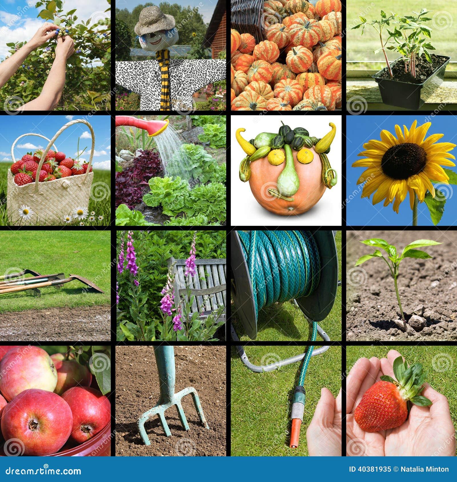 Arbeta i trädgården collage