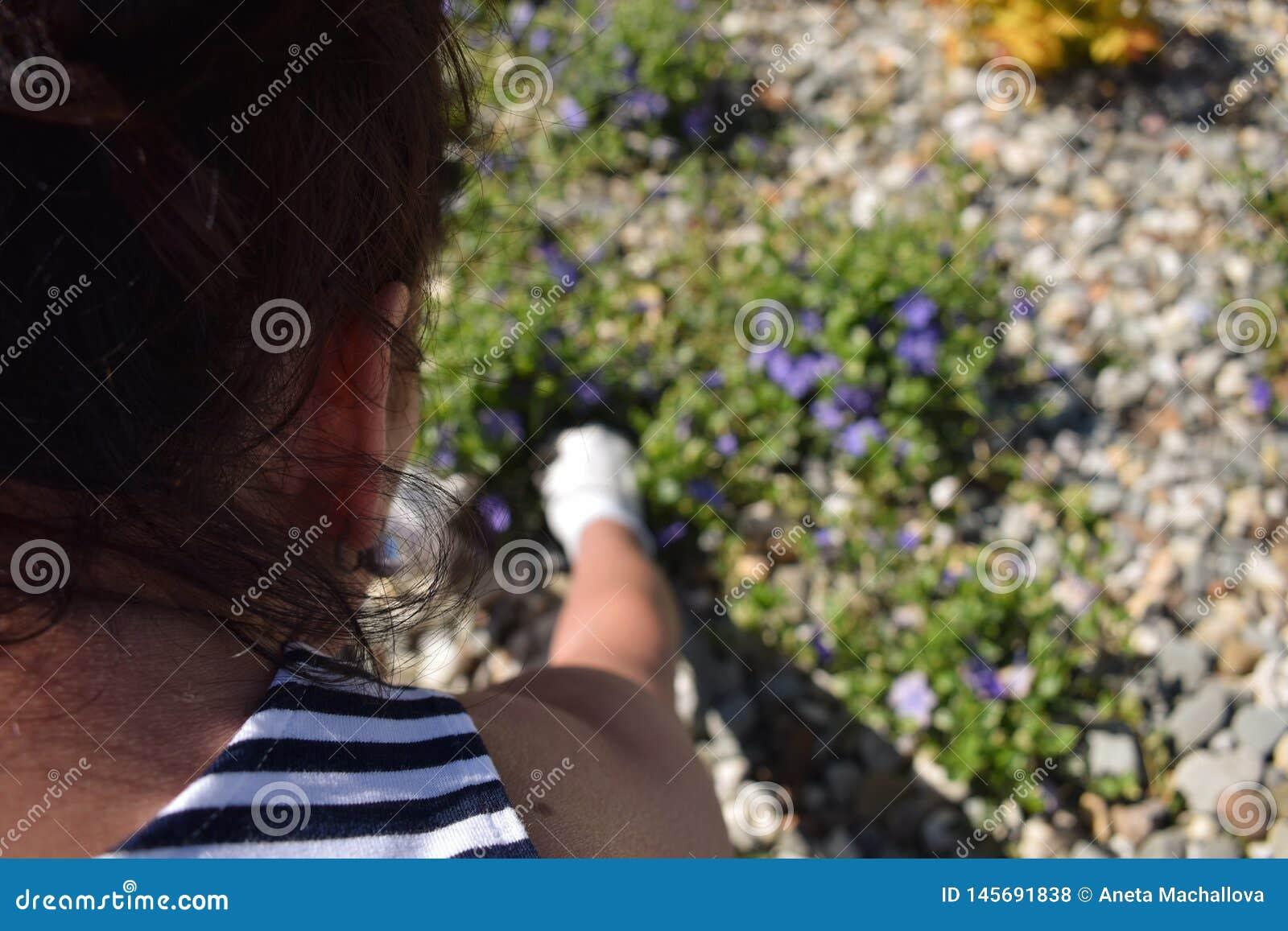Arbeta i trädgården - en kvinna som odlar hennes blommor i trädgården