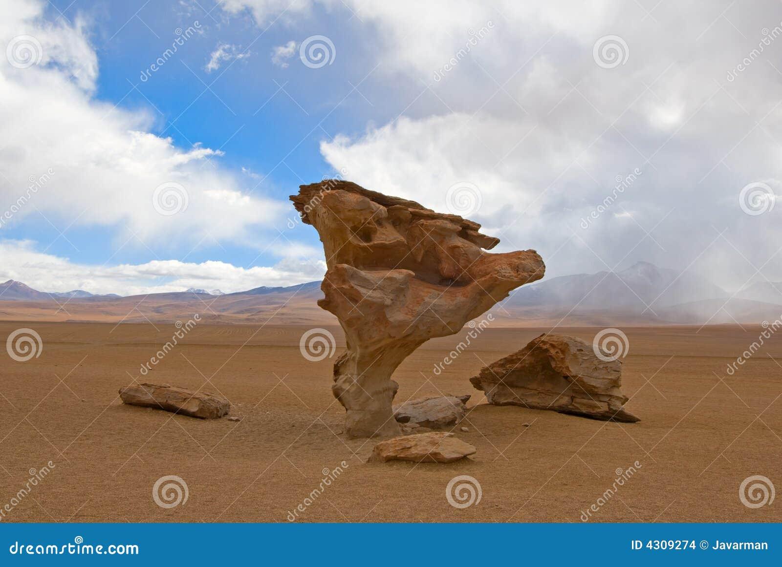 Arbol de piedra, árvore de pedra