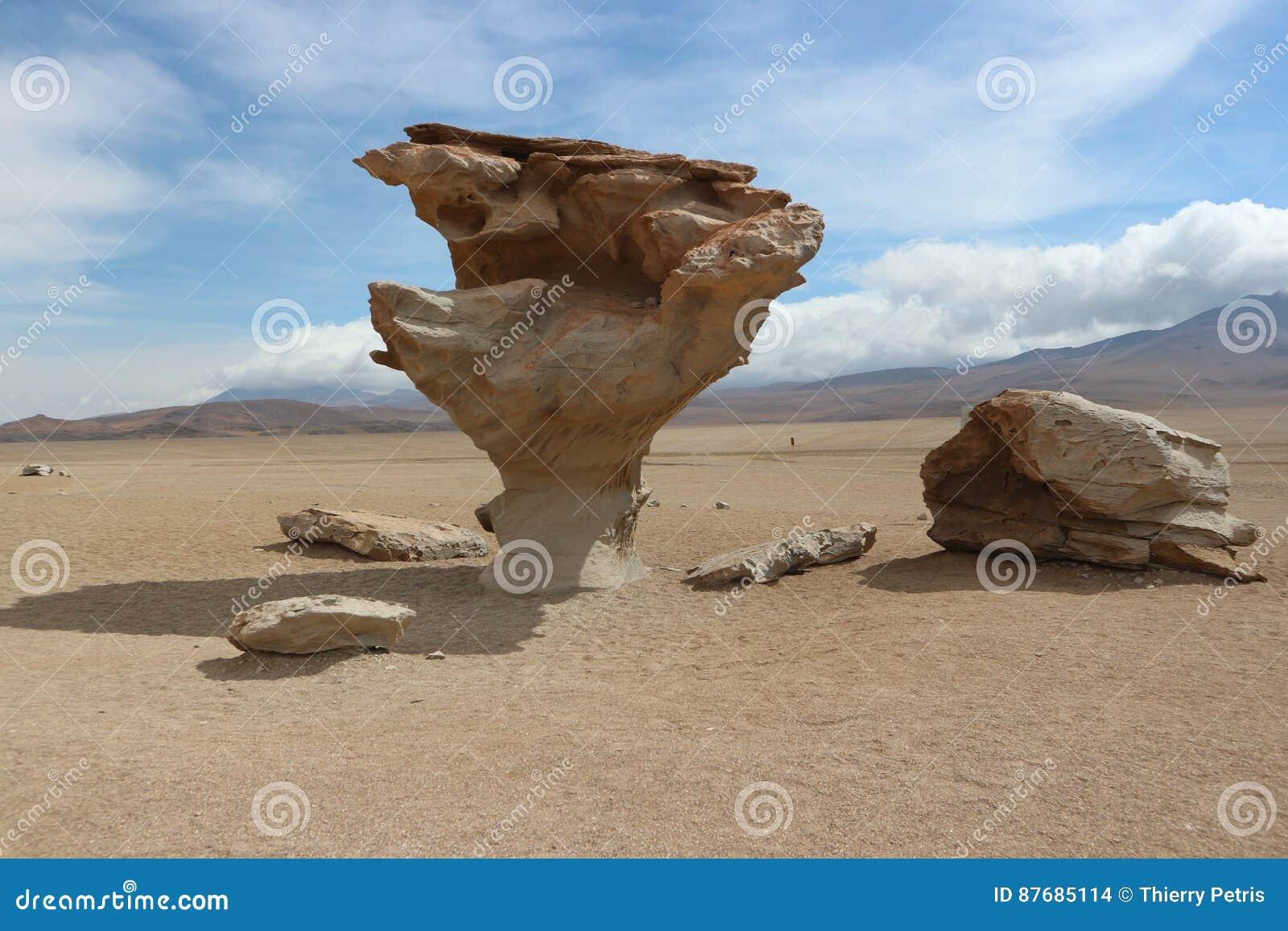 Arbol de Piedra, deserto de Atacama - árvore de pedra