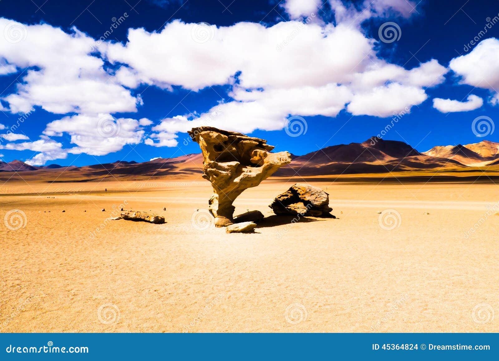 Arbol di Piedra Landscape