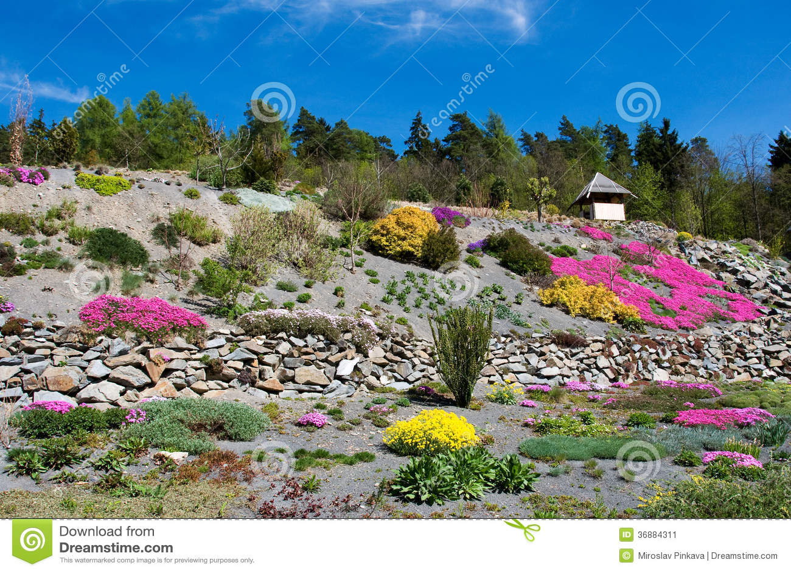 Download Arboreto In Paseka Da Sternberk, Repubblica Ceca Immagine Stock - Immagine di zona, landscaping: 36884311