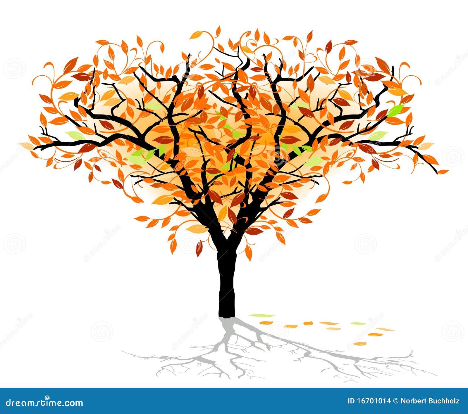 Arbre feuilles caduques automnal - Arbres a feuilles caduques ...