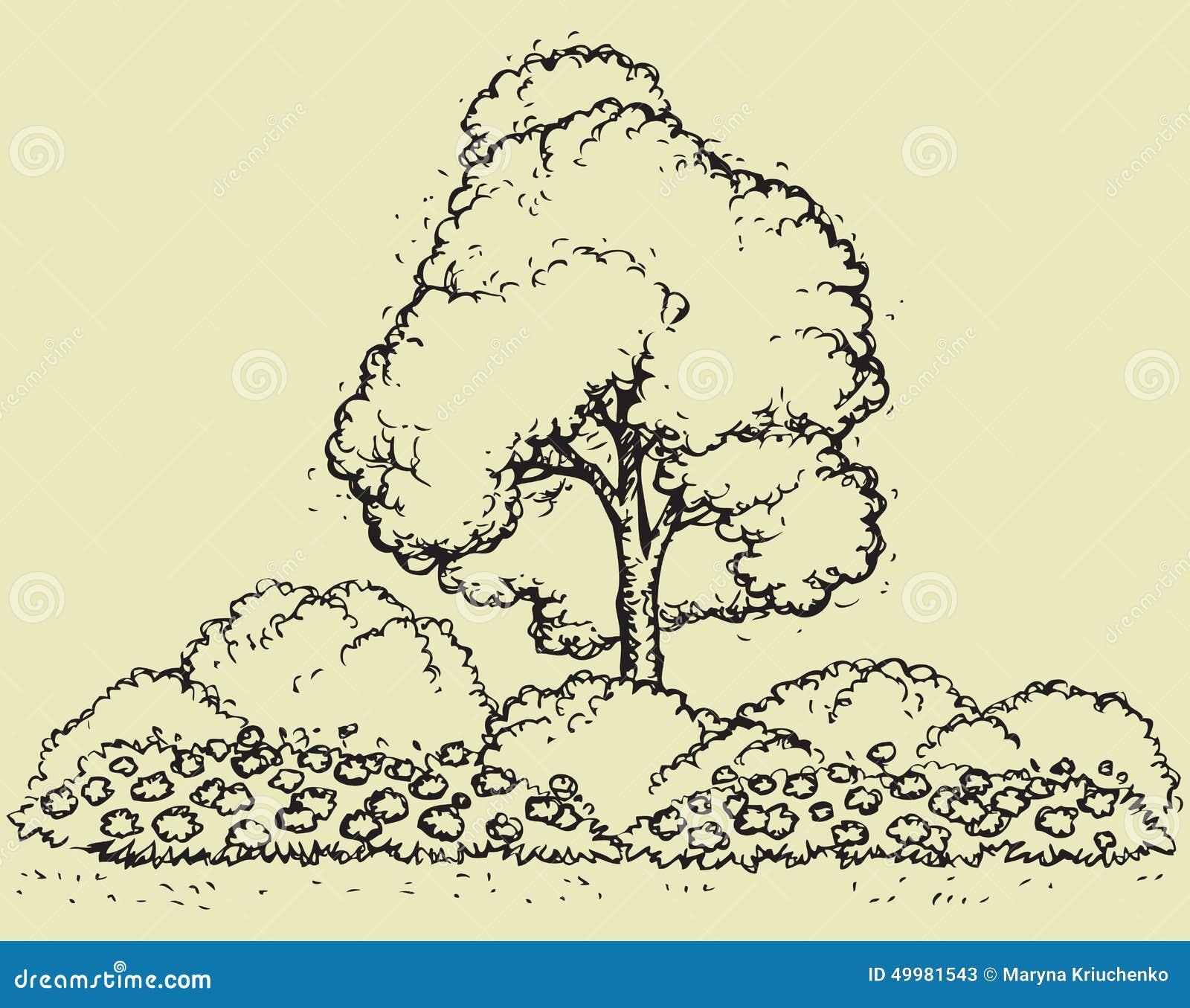 Arbre au dessus de parterre croquis de vecteur - Croquis arbre ...