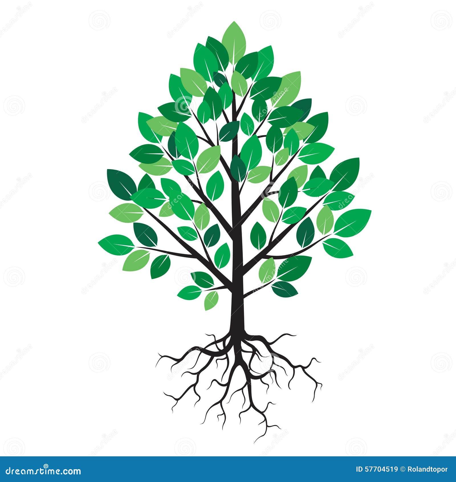 Arbre Avec Racine arbre noir avec les feuilles et les racines vertes illustration