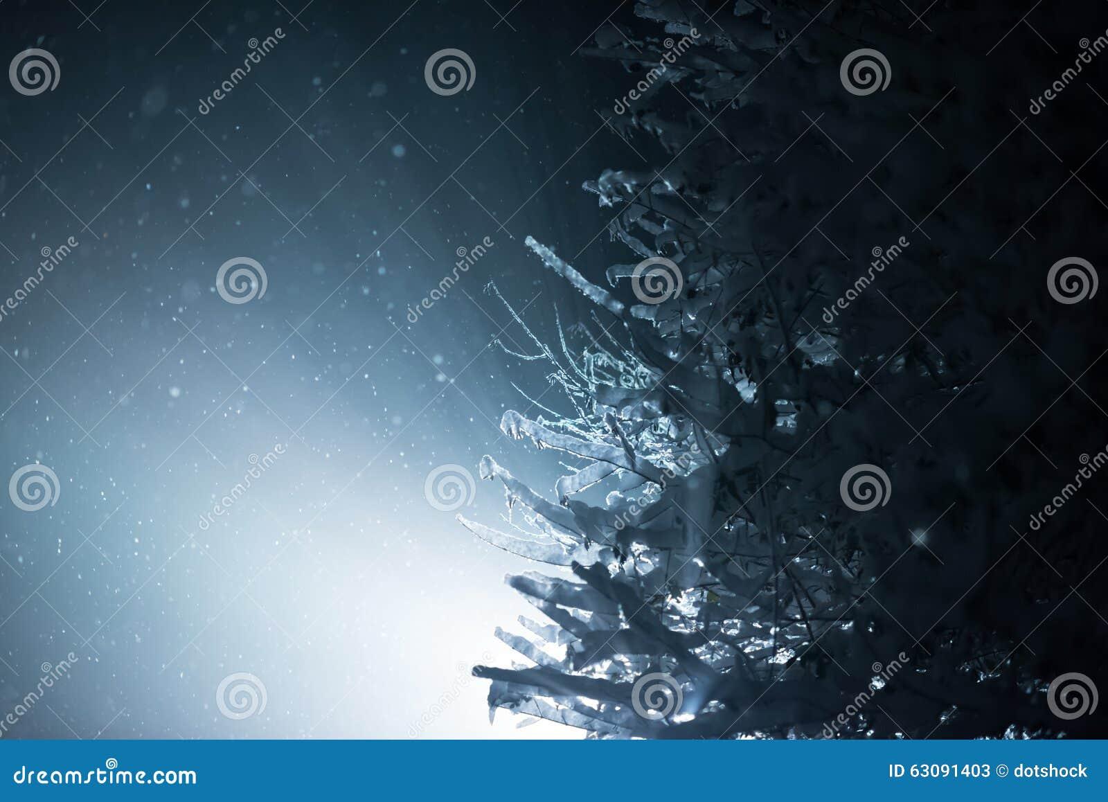 Download Arbre Couvert De Neige Fraîche La Nuit Hiver Image stock - Image du neuf, vacances: 63091403