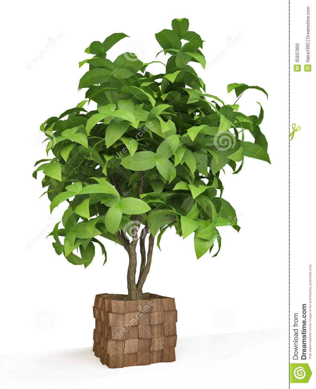 Arbre d coratif de plante d 39 int rieur illustration stock for Plante arbre interieur