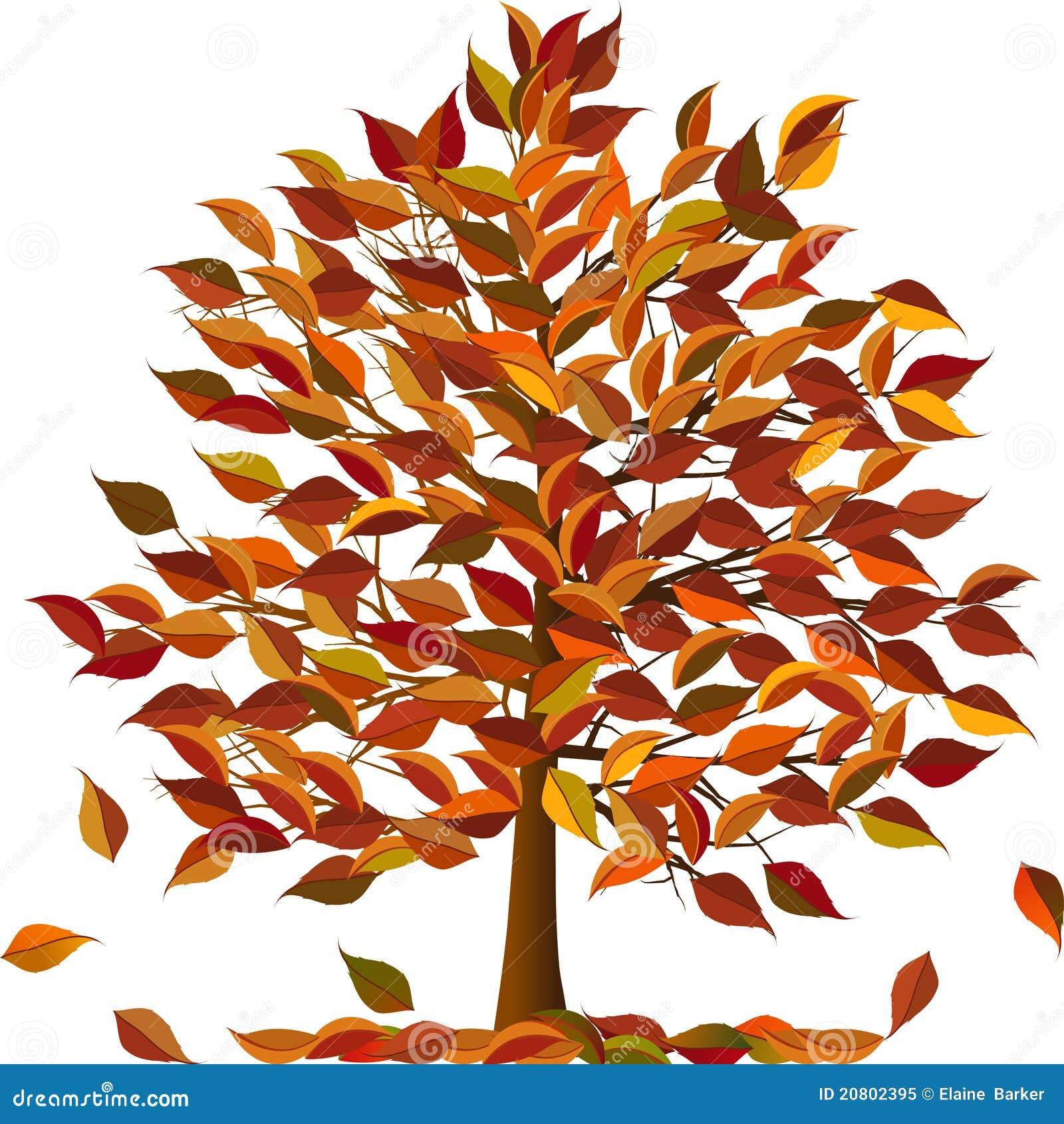 Arbre d 39 automne illustration de vecteur illustration du veine 20802395 - Arbre automne dessin ...