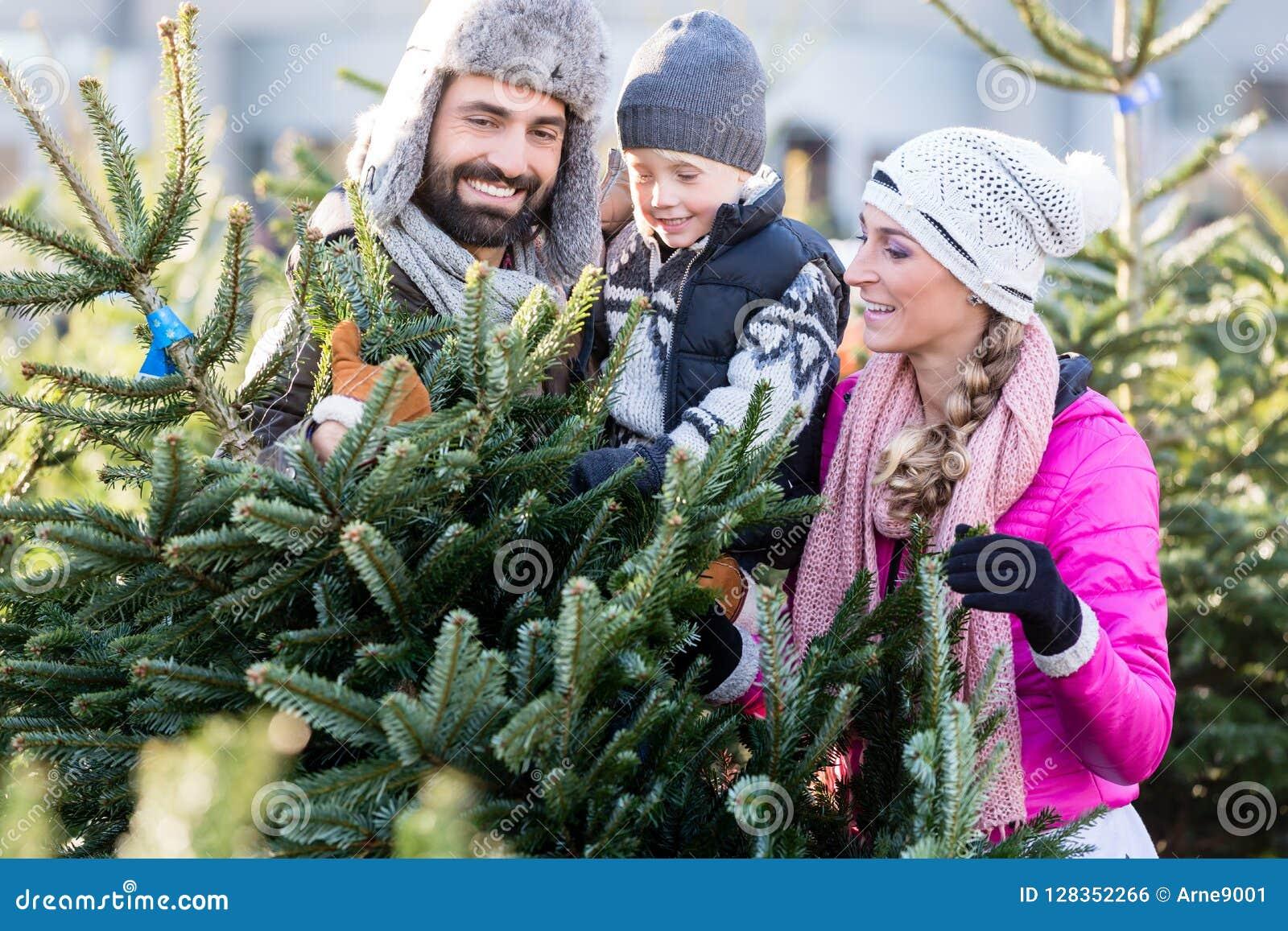 Arbre de Noël de achat de famille sur le marché