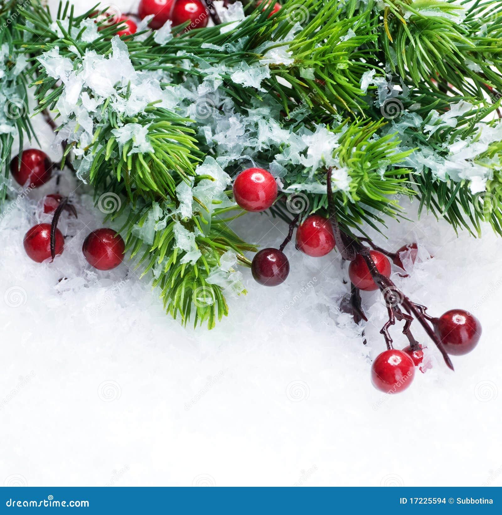 Arbre de Noël au-dessus de fond de neige