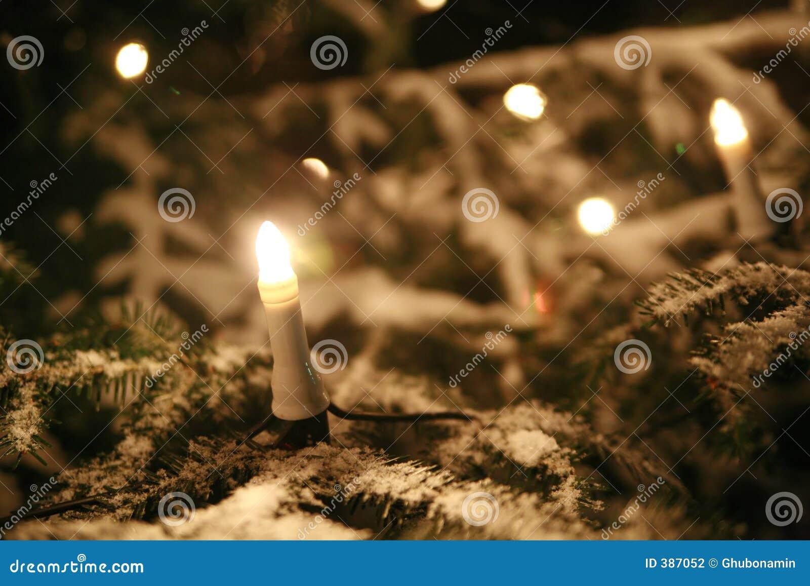 Arbre de Noël avec des lumières