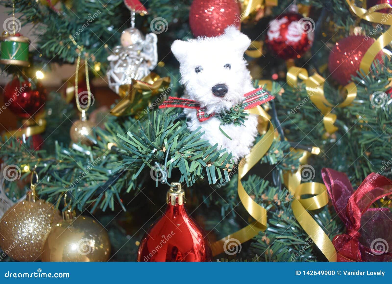 Arbre de Noël, jour de Noël