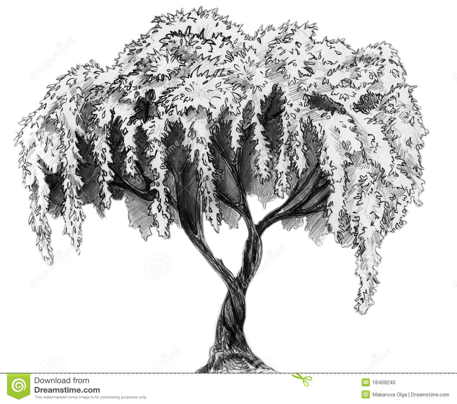 Arbre de sakura croquis de crayon illustration stock - Croquis arbre ...