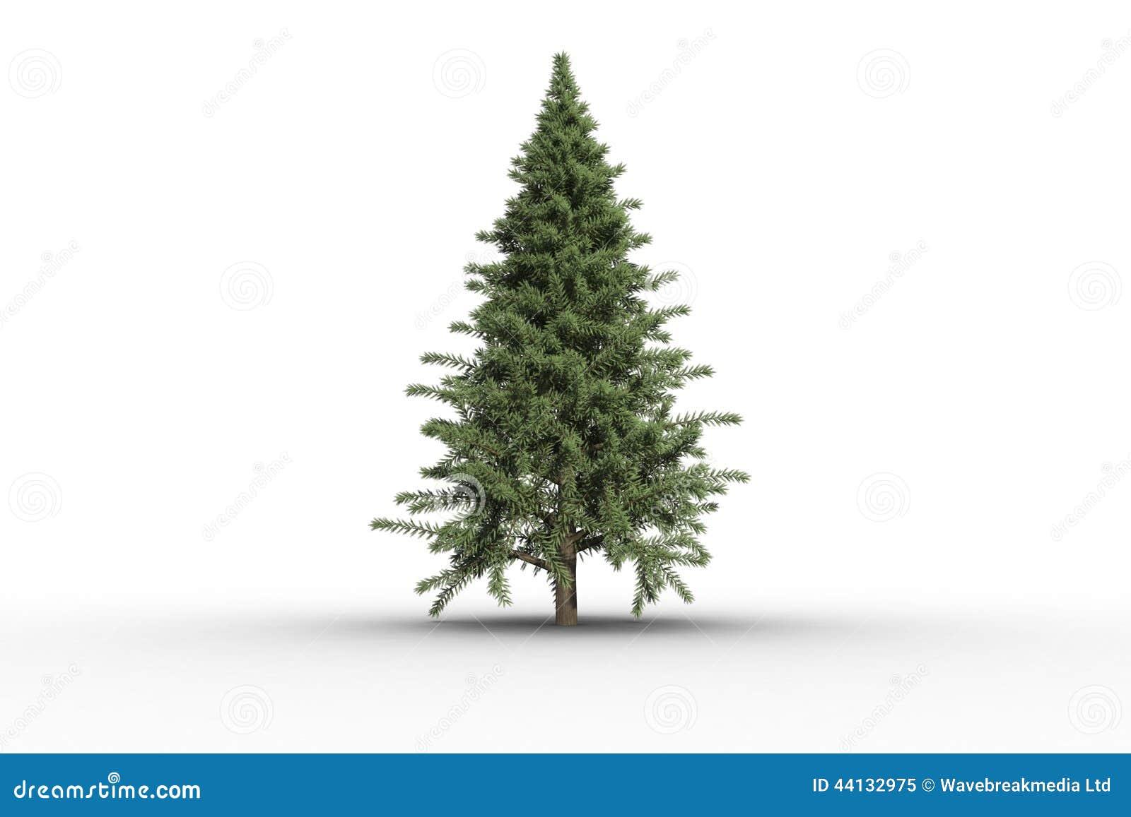 Arbre de sapin vert produit par digital illustration stock illustration du no l digital 44132975 - Dessin sapin vert ...