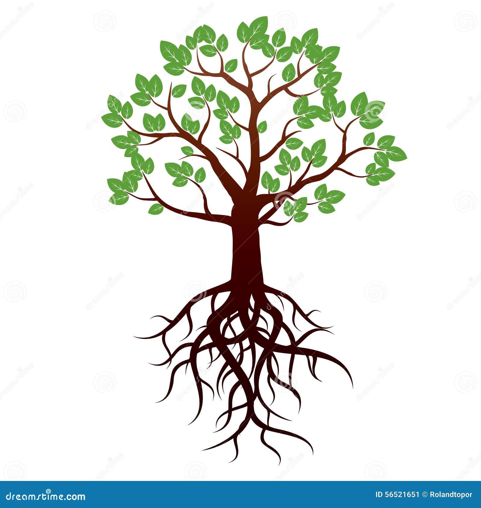 arbre et racines illustration de vecteur illustration stock illustration du d coration. Black Bedroom Furniture Sets. Home Design Ideas