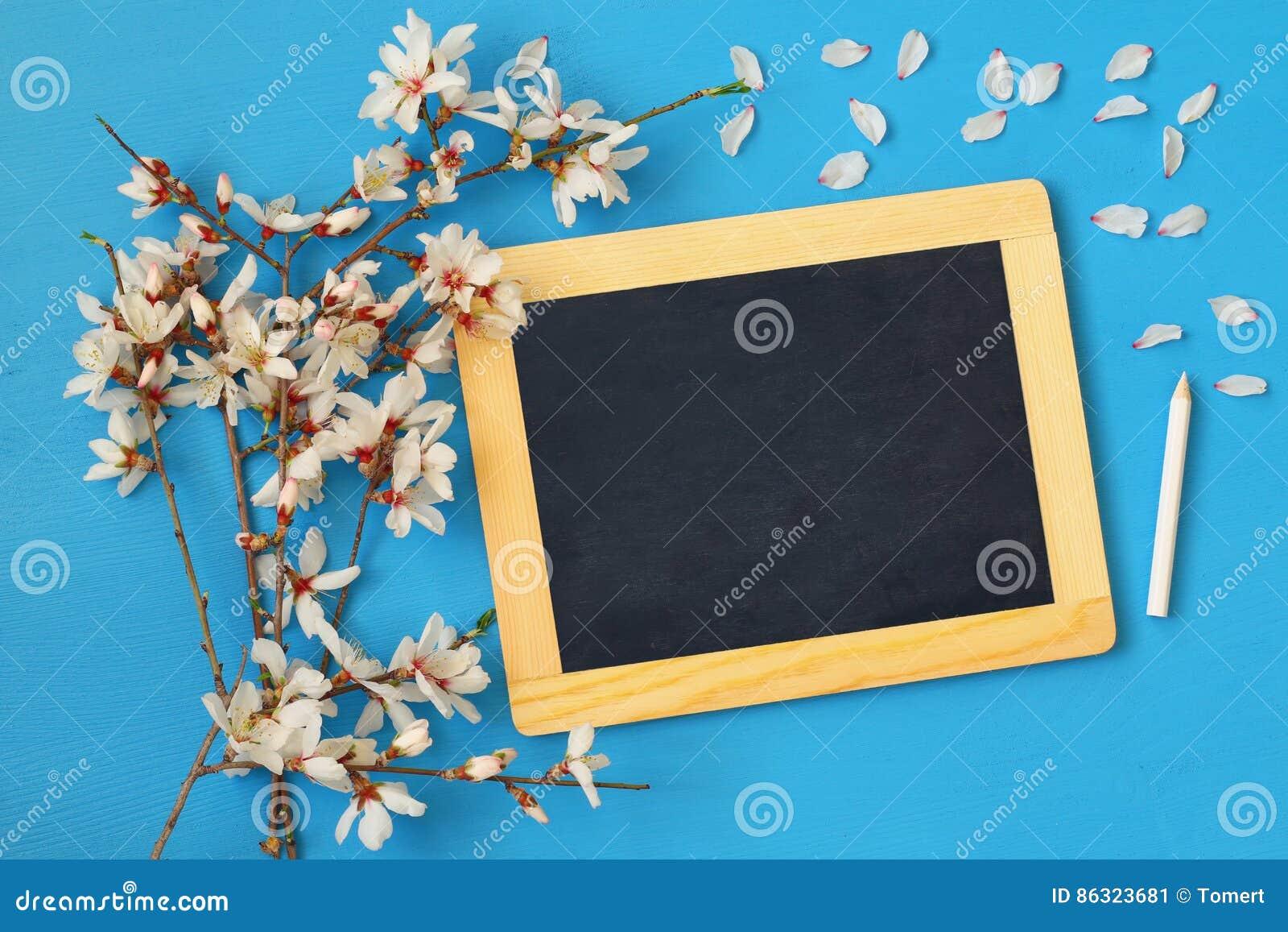 Arbre Et Tableau Noir De Fleurs De Cerisier De Ressort Image Stock
