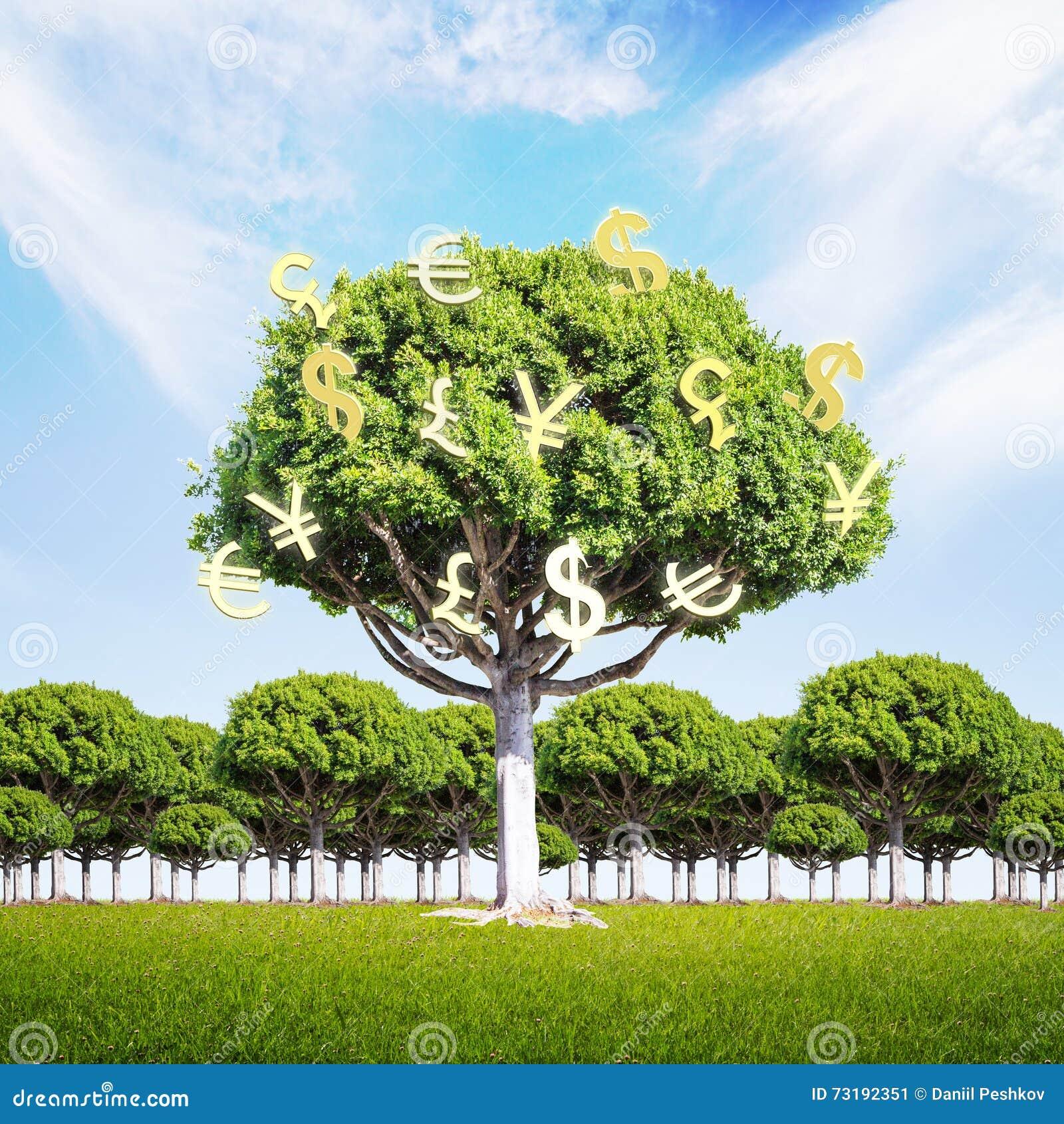 arbre financier d 39 argent de concept de croissance illustration stock illustration du financier. Black Bedroom Furniture Sets. Home Design Ideas
