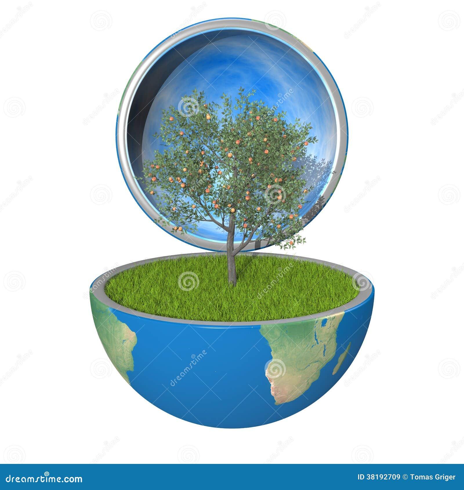 Arbre Fruitier D Intérieur arbre fruitier à l'intérieur de planète illustration stock