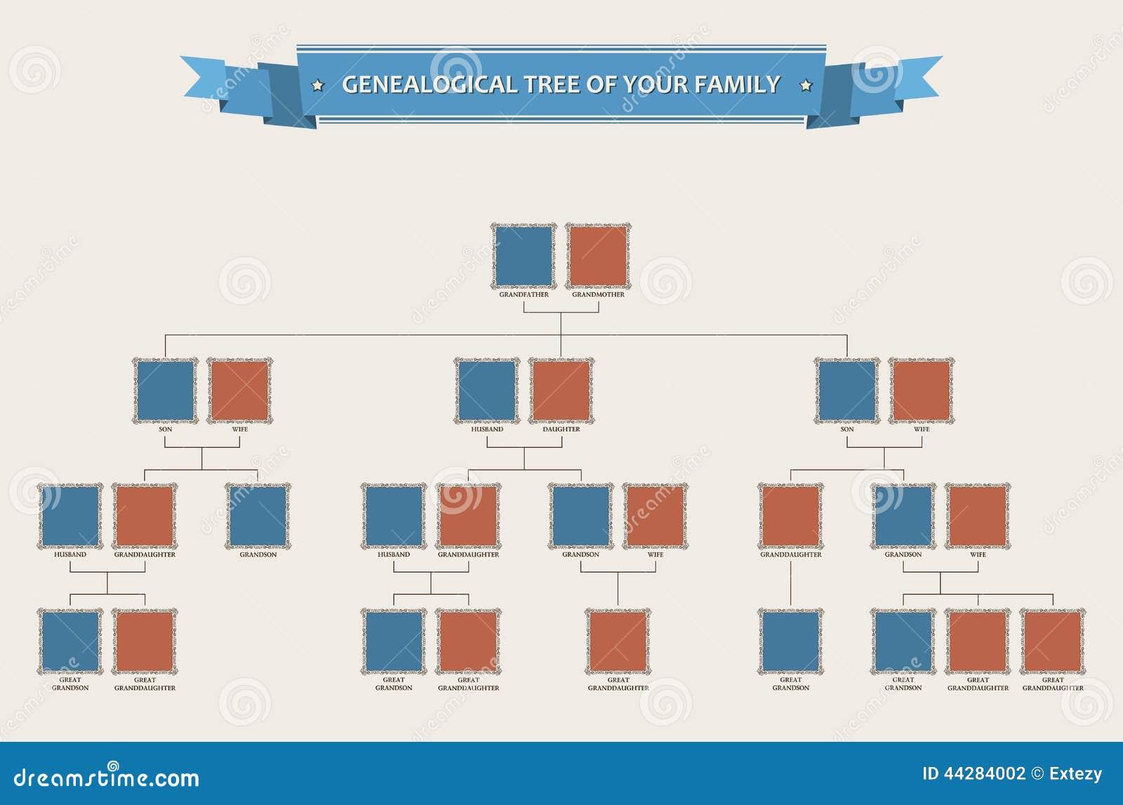 Arbre g n alogique de votre famille avec des encadrements - Arbre genealogique avec photo ...