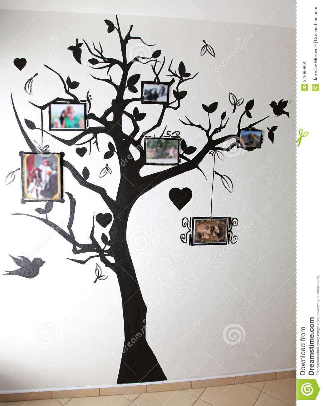 Tree And Owl Wall Stickers Arbre Peint Sur Le Mur Images Stock Image 37666864