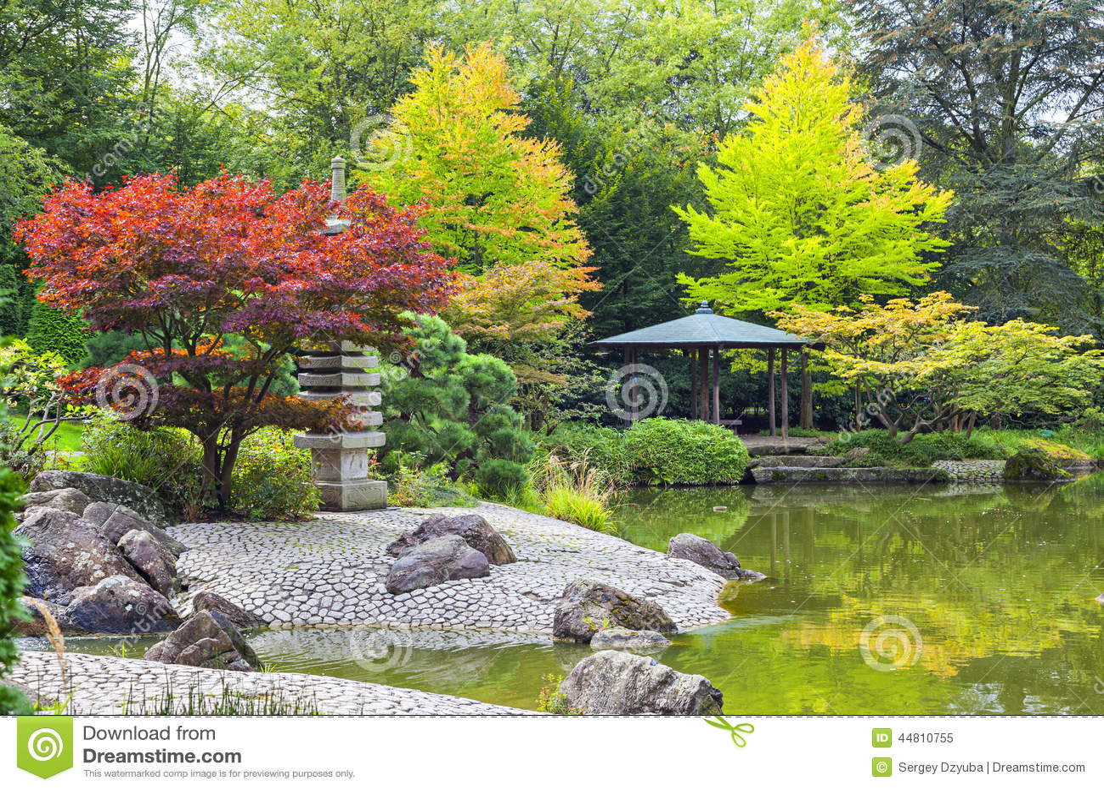 Arbre rouge pr s de l 39 tang vert dans le jardin japonais for Dans le jardin