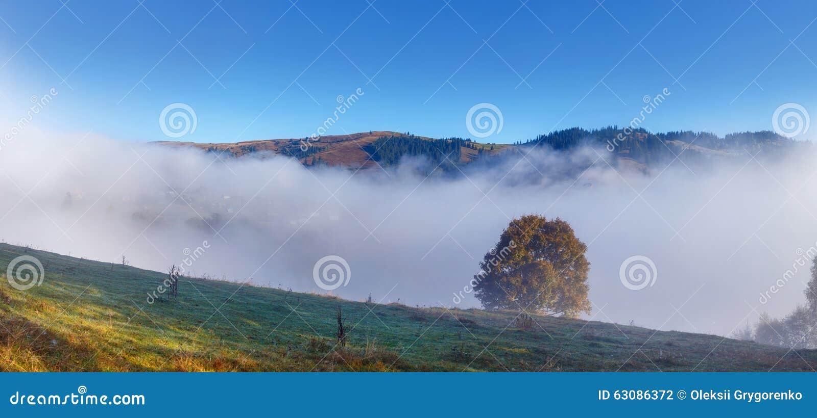 Download Arbre Sur Un Fond De Brouillard Et De Montagne Photo stock - Image du automne, profondément: 63086372